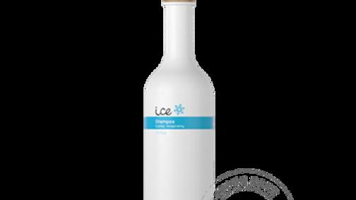 Ice Shampoo - verfrissend