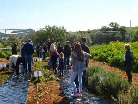 School's botanical gardens visit