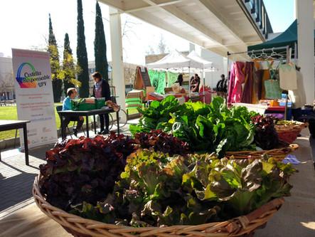 Market at the UPV