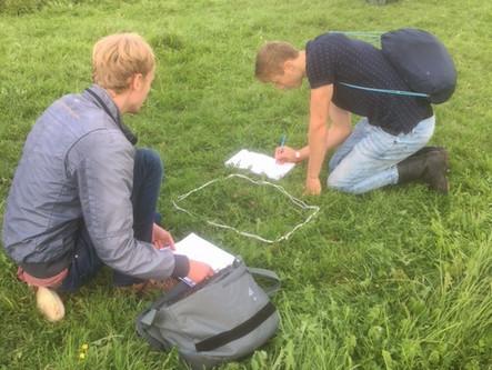 Fieldwork during the workweek of vwo 6