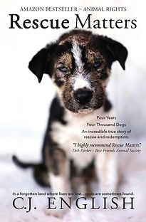 Updated Cover Rescue Matters.jpg