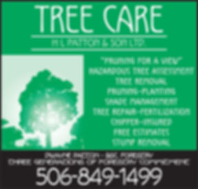 Tree Care Service in New Brunswick - Prunning, Hazardous Tree Removal, Repair, Chipper, Free Estimate, Stump Removal