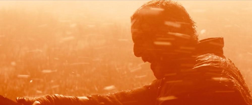 Sean Harris -Macduff - burning embers   - A Classic Review