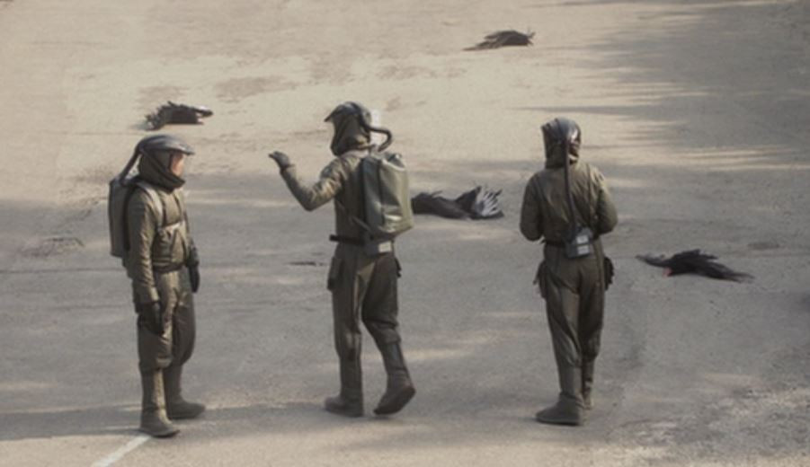 Wildfire team, street, dead, birds - A Classic Review