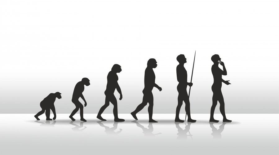 human evolution   - A Classic Review