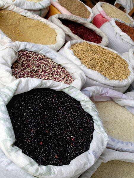 various grains  - A Classic Review