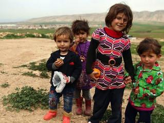 Vaticano analisará com peritos atual situação do conflito na Síria e no Iraque