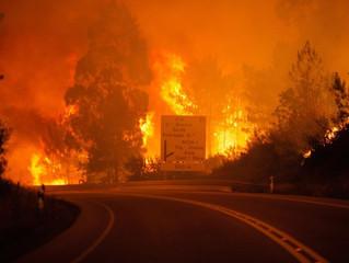 Bispos portugueses: Pedimos a Deus pelas vítimas dos incêndios