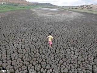 Brasileiros no Vaticano para debater o direito à água