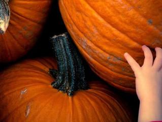 Halloween: O problema não está nas fantasias ou doces, esclarece sacerdote