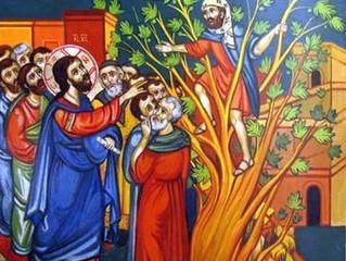 Reflexão dominical: o olhar de Jesus toca o coração de Zaqueu