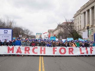 Papa Francisco expressa apoio a Marcha pela vida nos EUA