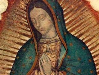 """Virgem de Guadalupe """"continua convertendo"""" corações hoje"""