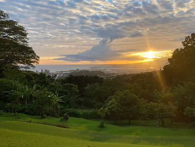 Nutridge Sunset.jpg