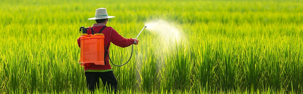 asian-farmer-peasantry-spraying-pesticid