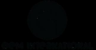 gem_international_logo_black.png
