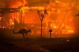 Οικολογική καταστροφή.. χωρίς επιστροφή.