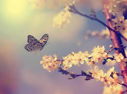 Με τα φτερά σου.. μπορείς να αλλάξεις το κόσμο!