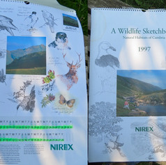 NIREX 1997 Propaganda Calendar