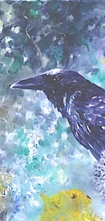 Raven in Ancient Woodland
