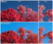 Colour Fringing.jpg