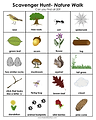 Scavenger-Hunt-Nature-Walk-816x1024.png