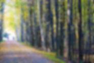 GLBR-Rail-Trail-10.jpg