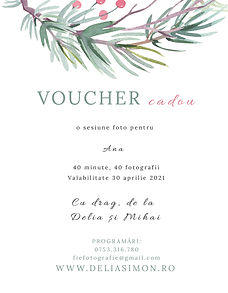 VOUCHER TEMPLATE CRACIUN.jpg