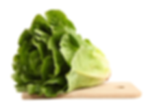 romaine.png
