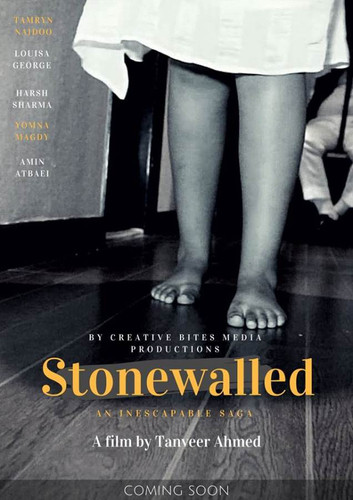 Stonewalled.jpg