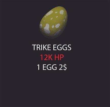Trike Egg (Pc Small)