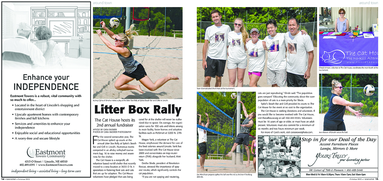 L Magazine | Litter Box Rally