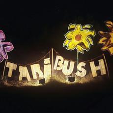 Taribush Kuna festival is de beste
