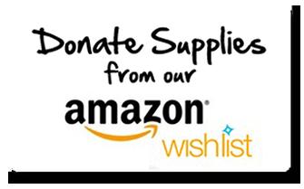 Amazon Smile Wishlist