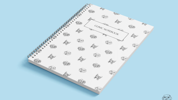 The Clinic Notebook - Cover