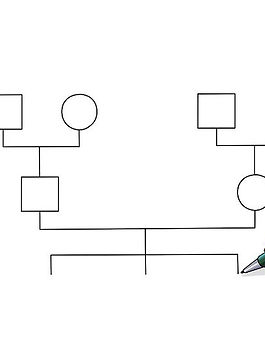 v4-728px-Make-a-Genogram-Step-11.jpg