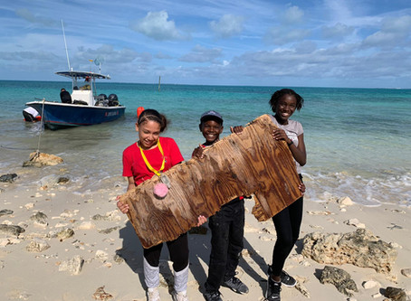 Some notes on Abaco's environment after Hurricane Dorian