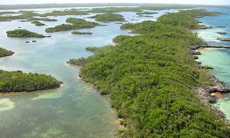 Snake Cay  Aerial (2).jpeg