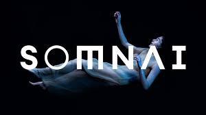 Somnai - Virtual Reality | Immersive Theatre