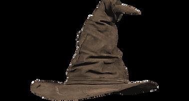 chapeau pour équipe.png