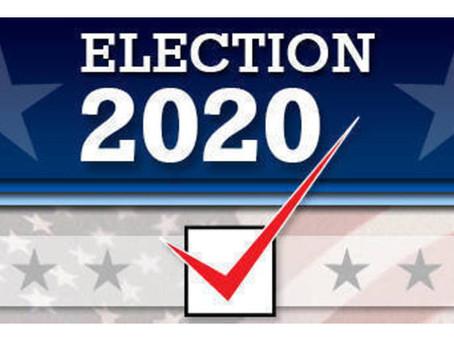 November Voting Info