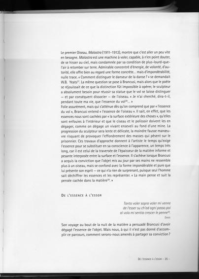 Brancusi et la photographie-Quentin-Vint