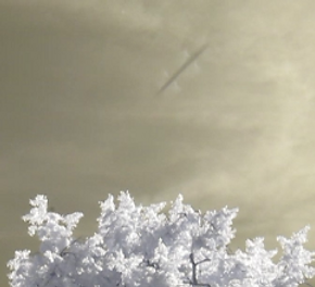 Infrared skyfish filmed with 720nm IR pass filter. questfortheinvisibles.co.uk