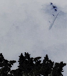 Infrared missile-like skyfish filmed with 720nm IR pass filter. questfortheinvisibles.co.uk