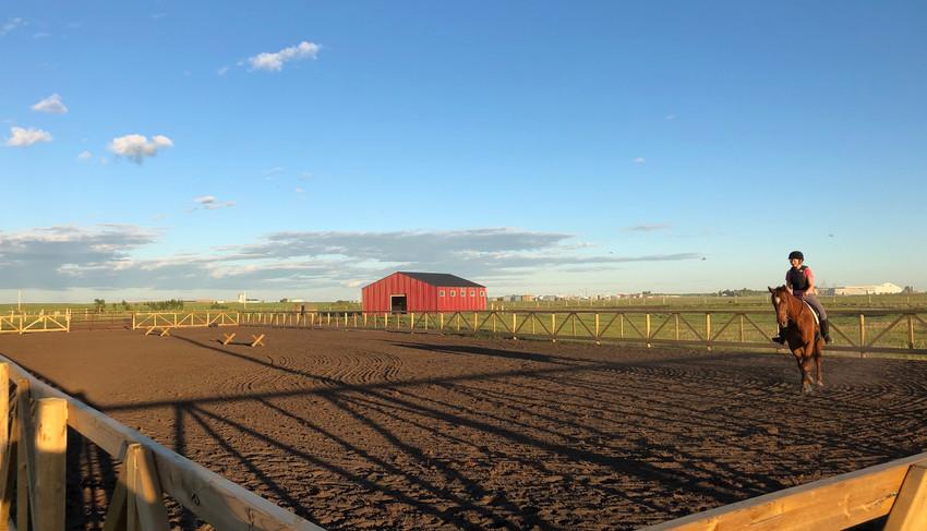 Fidelity Equestrian Centre