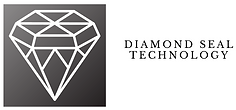DIAMOND SEAL TECHNOLOGY.png