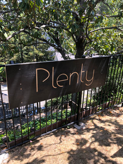 Plenty - Sign