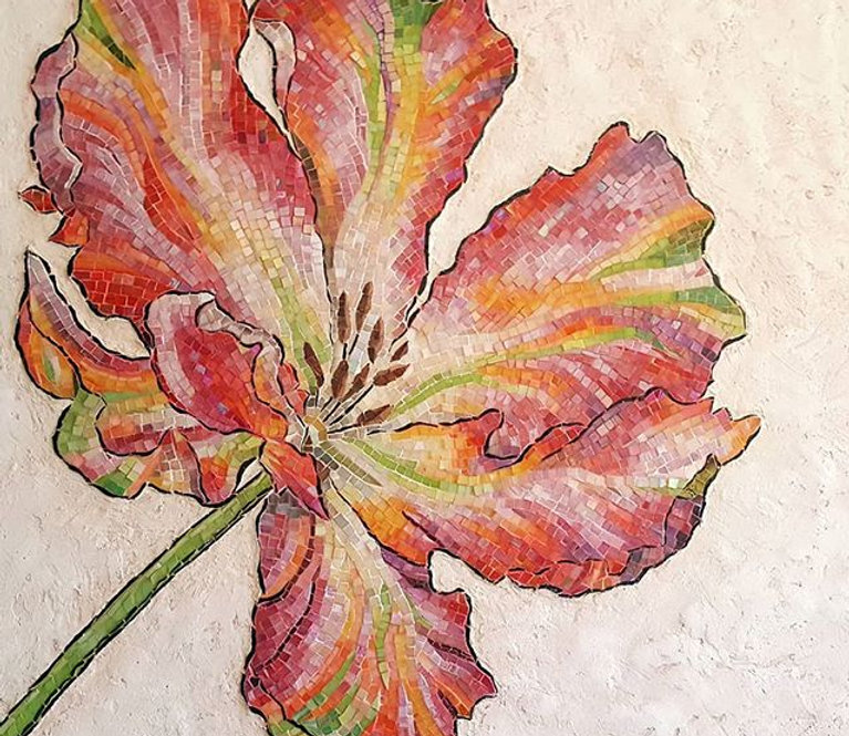 Variegated Parrot Tulip all finished. Be