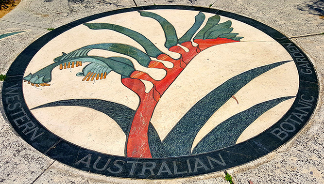 Kings Park Botanical Gardens