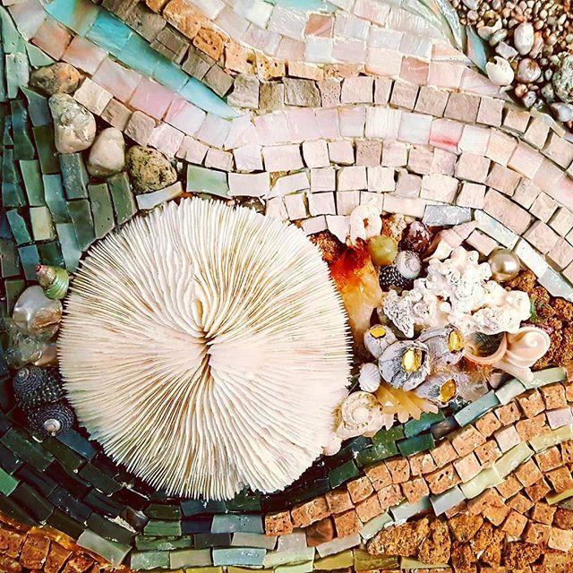 Flow detail with sea mushroom